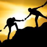 Partner forniture edili